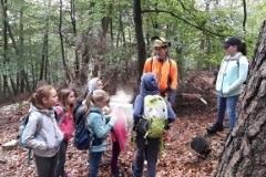 Waldaktionstag2018